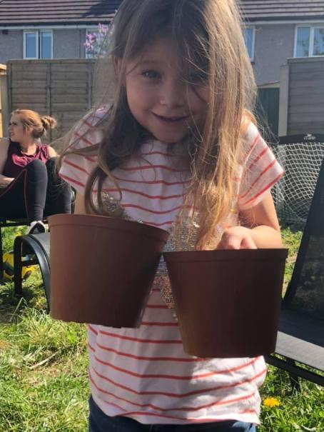 Planting sunflowers in Birkenhead.